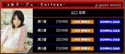 6zgr G-Queen - Wakana Taniguchi - Cortege 谷口 若菜 [WMV/923MB]