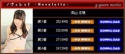 35039167_383_003m G-Queen - Shiho Takayama - Novelette 高山 志穂 [WMV/942MB]