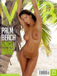 Angel-Dark-Palm-Beach-l5mhf60c5c.jpg